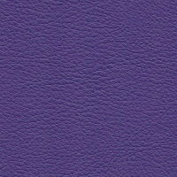 Kunstleer Flame Purple