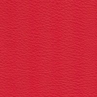 Kunstleer Flame Red