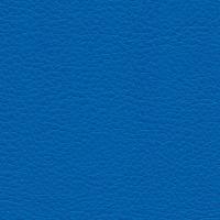 Kunstleer Flame Blue