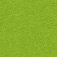 Kunstleer Flame Lime