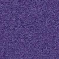 Kunstleer Flame Purple